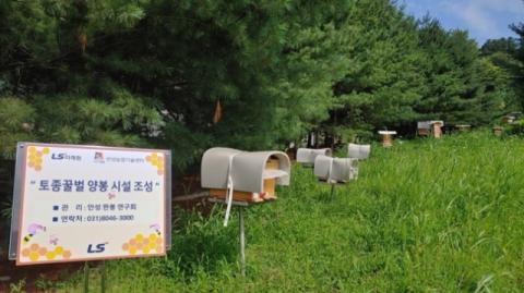 LS그룹, 안성서 토종꿀벌 육성사업 동참