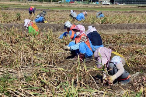 농협, 6조원 규모 영농자금 대출금리 1%대로 인하