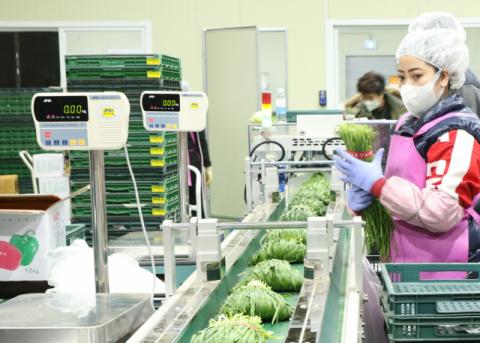 CJ프레시웨이, B2C로 농산물 판로확대나서